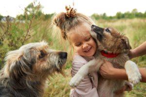 Знакомиться и общаться с собакой